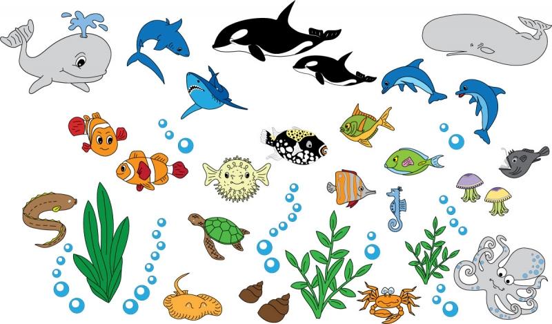 DĚTSKÉ samolepky na zeď - Dětské samolepky na zeď - Mořský svět - Kolekce XXL
