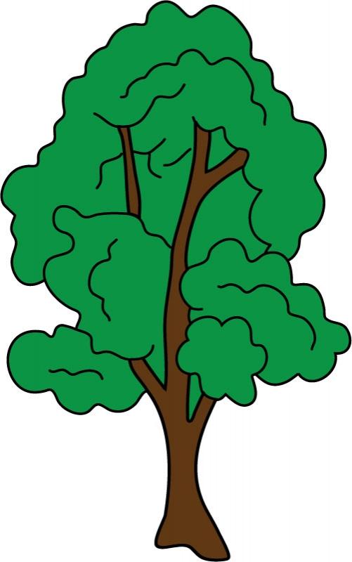 DĚTSKÉ samolepky na zeď - Strom