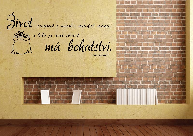 NÁPISY, CITÁTY, TEXTY a ZNAKY - Samolepky na zeď - Citát - Život má bohatství
