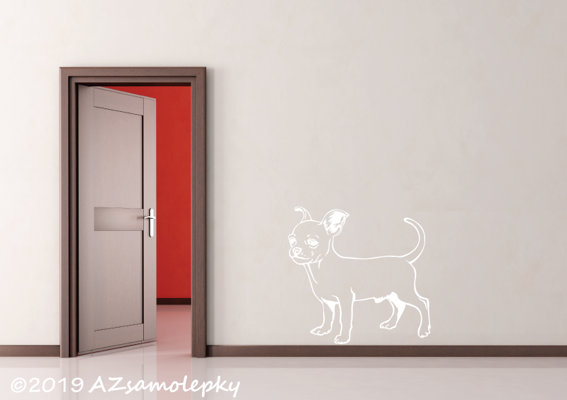 ZVÍŘATA - samolepky na zeď - Samolepky na zeď - Čivava krátkosrstá