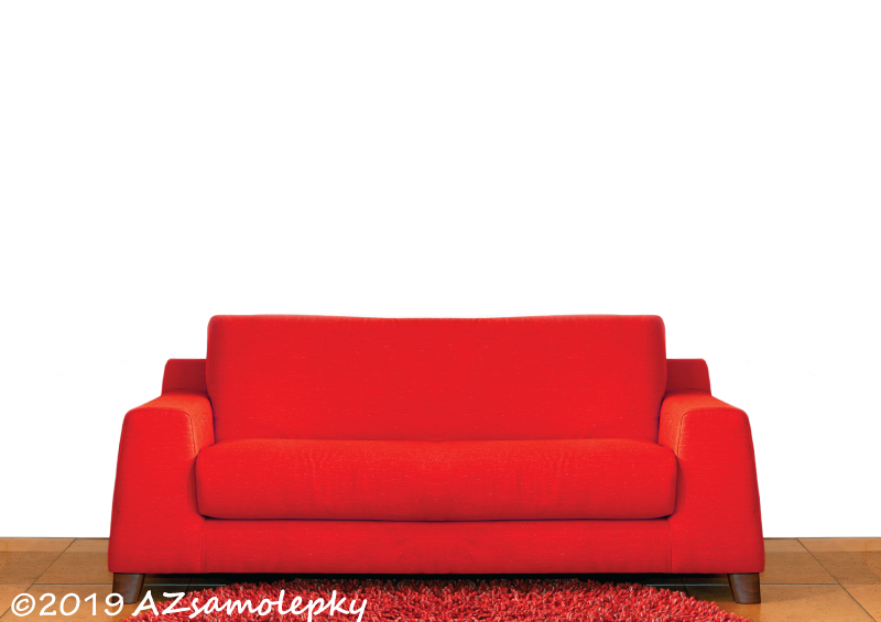ZVÍŘATA - samolepky na zeď - Samolepky na zeď - Kočka domácí