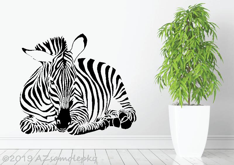 ZVÍŘATA - samolepky na zeď - Samolepky na zeď - Ležící zebra