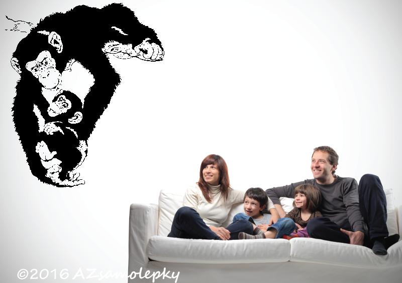 ZVÍŘATA - samolepky na zeď - Samolepky na zeď  - Šimpanz a mládě
