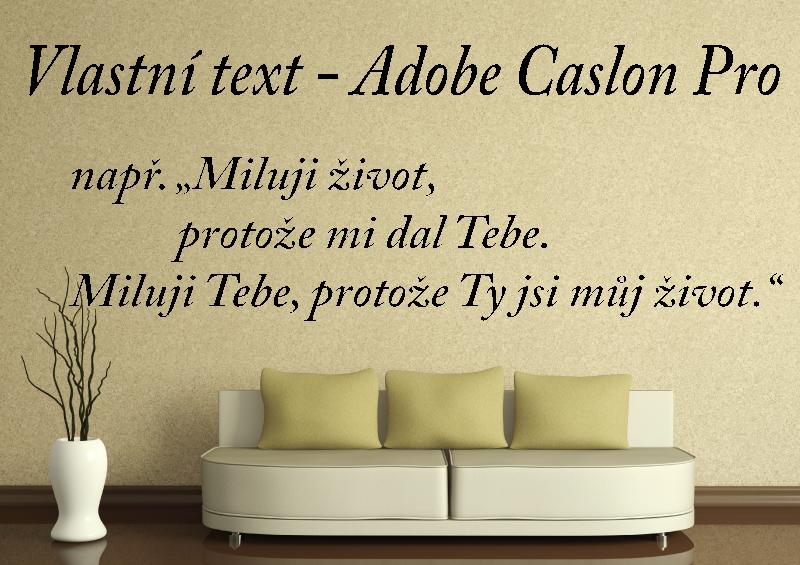 NÁPISY, CITÁTY, TEXTY a ZNAKY - Samolepky na zeď-Vlastní text-Adobe Caslon Pro