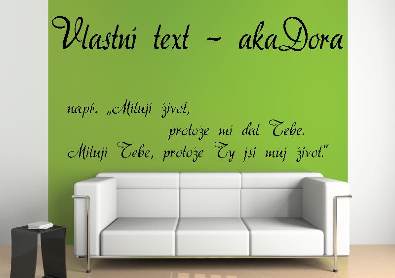 NÁPISY, CITÁTY, TEXTY a ZNAKY - Samolepky na zeď-Vlastní text-aka Dora