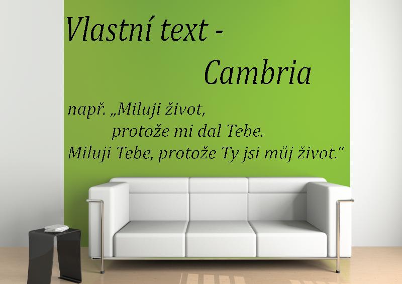 NÁPISY, CITÁTY, TEXTY a ZNAKY - Samolepky na zeď-Vlastní text-Cambria