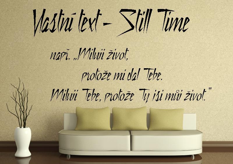 NÁPISY, CITÁTY, TEXTY a ZNAKY - Samolepky na zeď-Vlastní text-Still Time