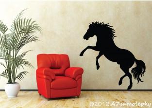 Samolepky na zeď - Divoký kůň